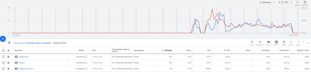 Case study Google Ads - efekty kampanii